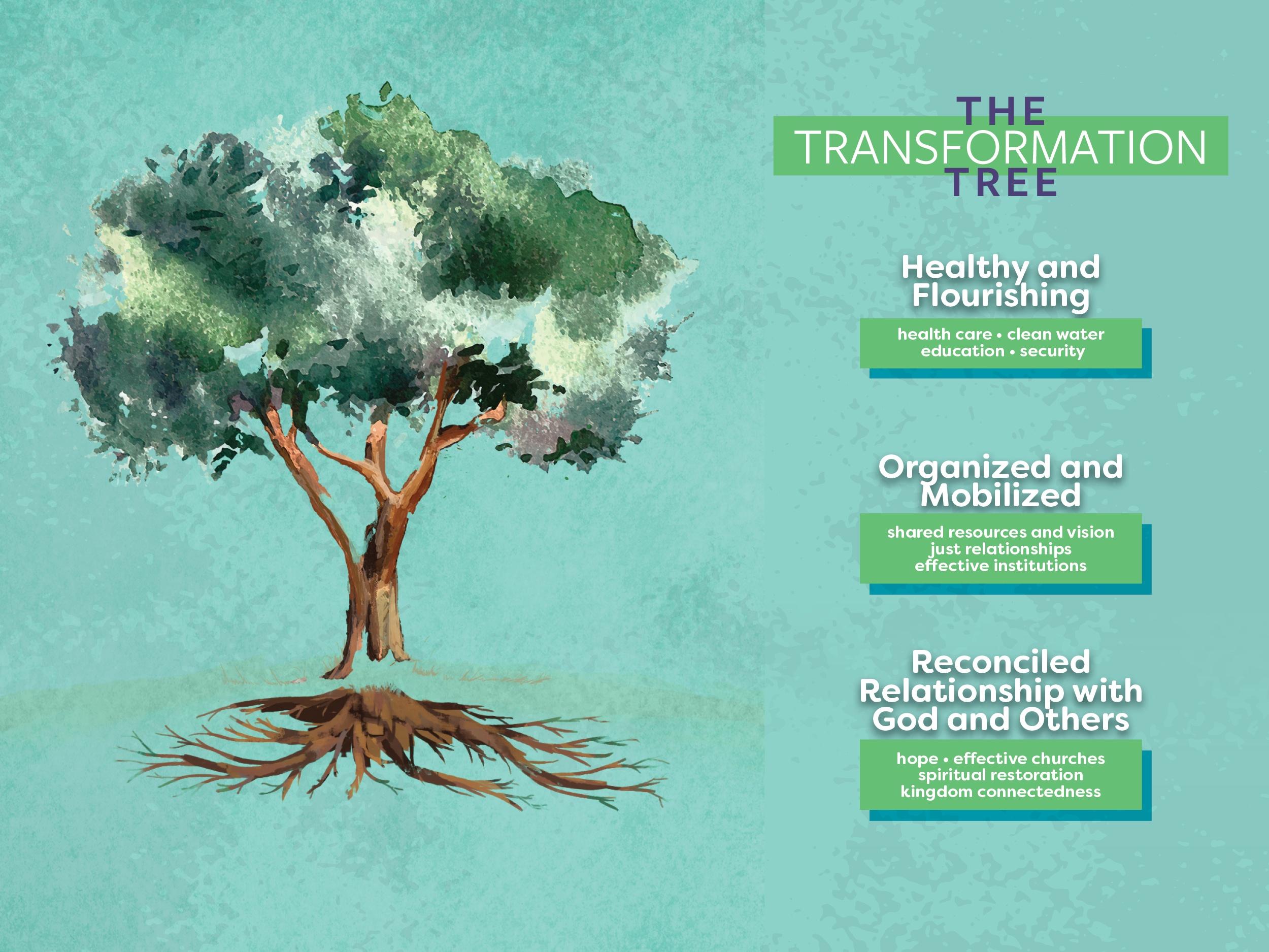 Transformation_Tree.jpg